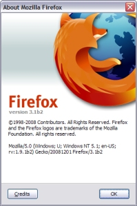 firefox_3_1_beta_2_review_5